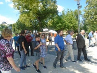 Excursion:  Veszprém Conference on Differential and Difference Equations and Applications